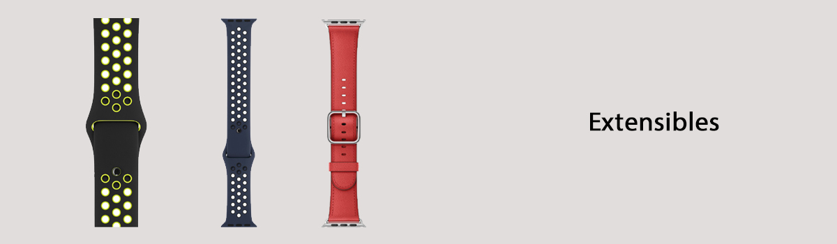 Extensibles Apple Watch