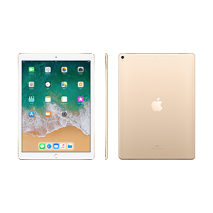 iPad Pro 12,9 Wi-Fi + Cellular, 64 GB Gris espacial